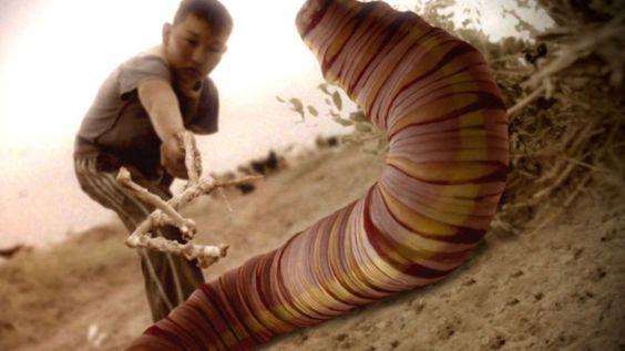 mongolian death worms dead body mongolian death worms dead body mongolian death worms