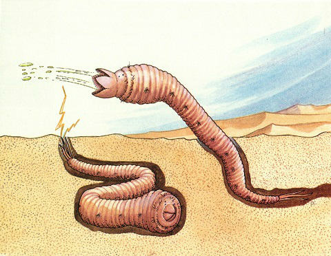 mongolian-death-worms-electric-shock
