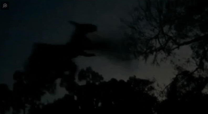 new-jersey-devil-sightings-with-picture
