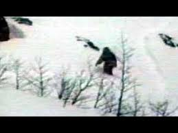 real-yeti-sightings-with-pictures