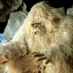 Top 10 Yeti Sightings with Pictures Proved Yeti is Real