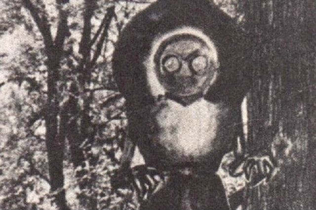 flatwoods-monster-facts