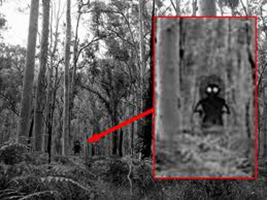 flatwoods-monster-sighting