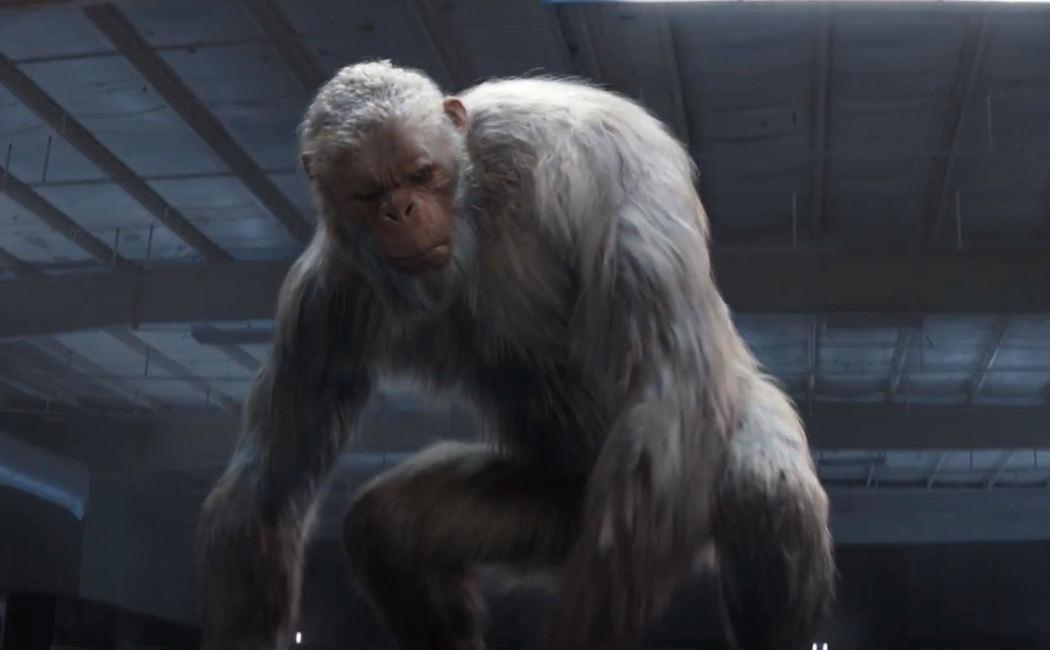 abominable-snowman-ape
