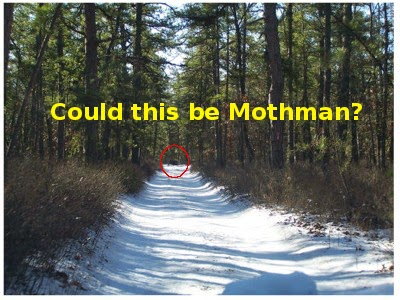 Top 10 Mothman Sightings with Pictures Proved It is Real ...