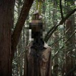 Top 15 Secrets of the Aokigahara Forest about Ghosts and Bodies
