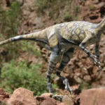 Top 10 Eoraptor Characteristics that have Helped it Survive