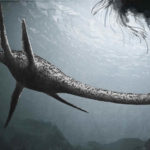 Top 10 Plesiosaur Characteristics that Have Helped it Survive