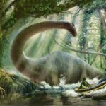 10 Evidences Proof the Mokele Mbembe Still Alive