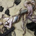 10 Evidences Prove the Mermaid Body Found Was Hoax