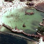 10 Reasons about Why did Disney Discovery Island Close Down