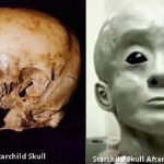 20 Mystery Secrets of the Starchild Skull
