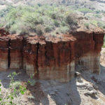 20 Facts of the Olduvai Gorge about why it Rewrote History